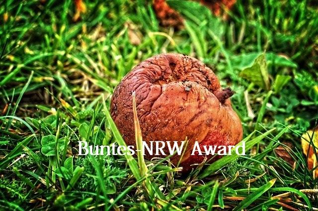 Buntes-NRW Award